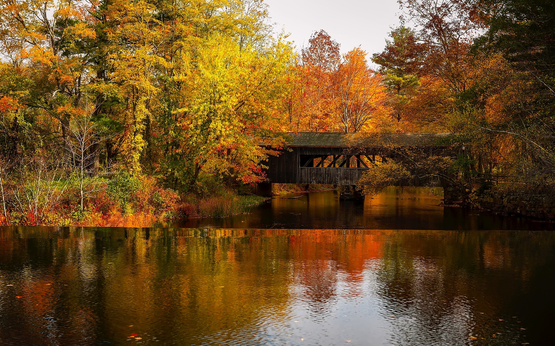 Fall bridge