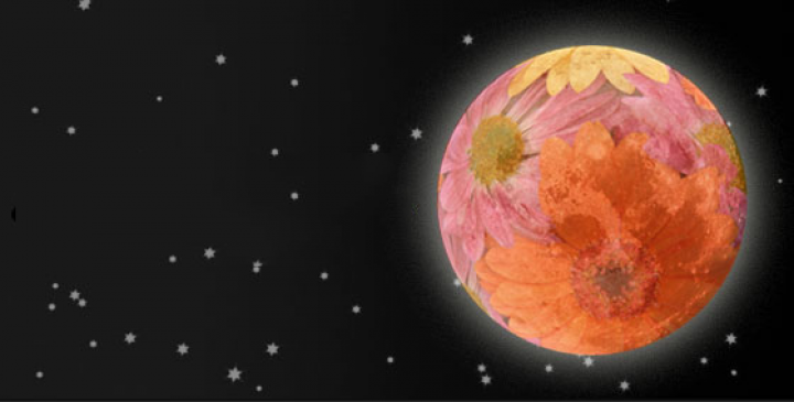 flower_moon_0.png