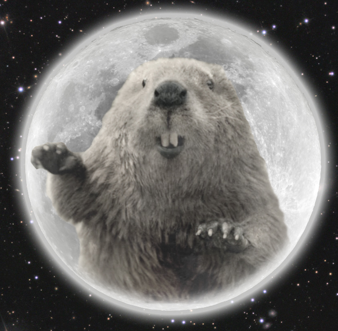full-beaver-moon-cover.jpg