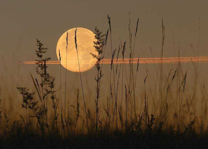 Harvest full moon