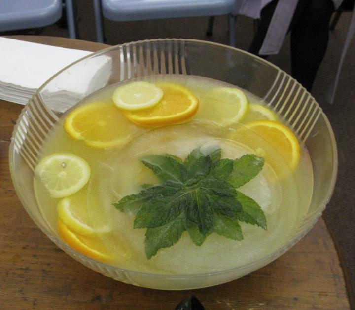 mint-chiller-recipe.jpg