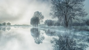 winter nature scene