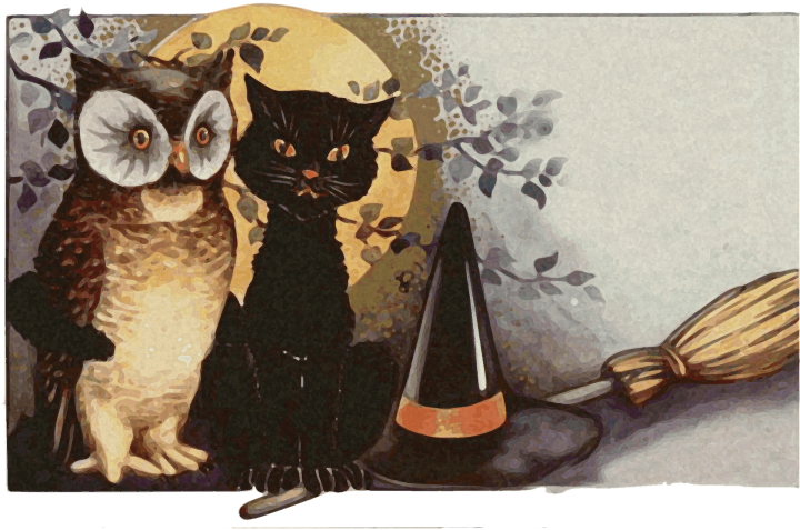Halloween cat and owl