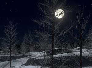 moon with winter trees