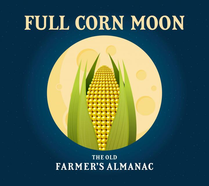 The Full Corn Moon. Graphic by Colleen Quinnell/The Old Farmer's Almanac.