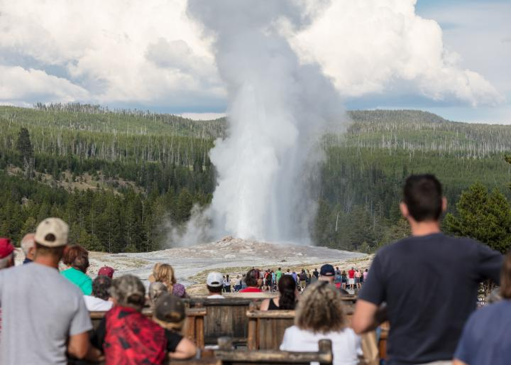 Old Faithful Geyser in Yellowstone National Park. Photo by National Park Service/Jacob W. Frank.