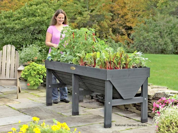 Container Gardening for Vegetables – Container Vegetable Gardening Plans