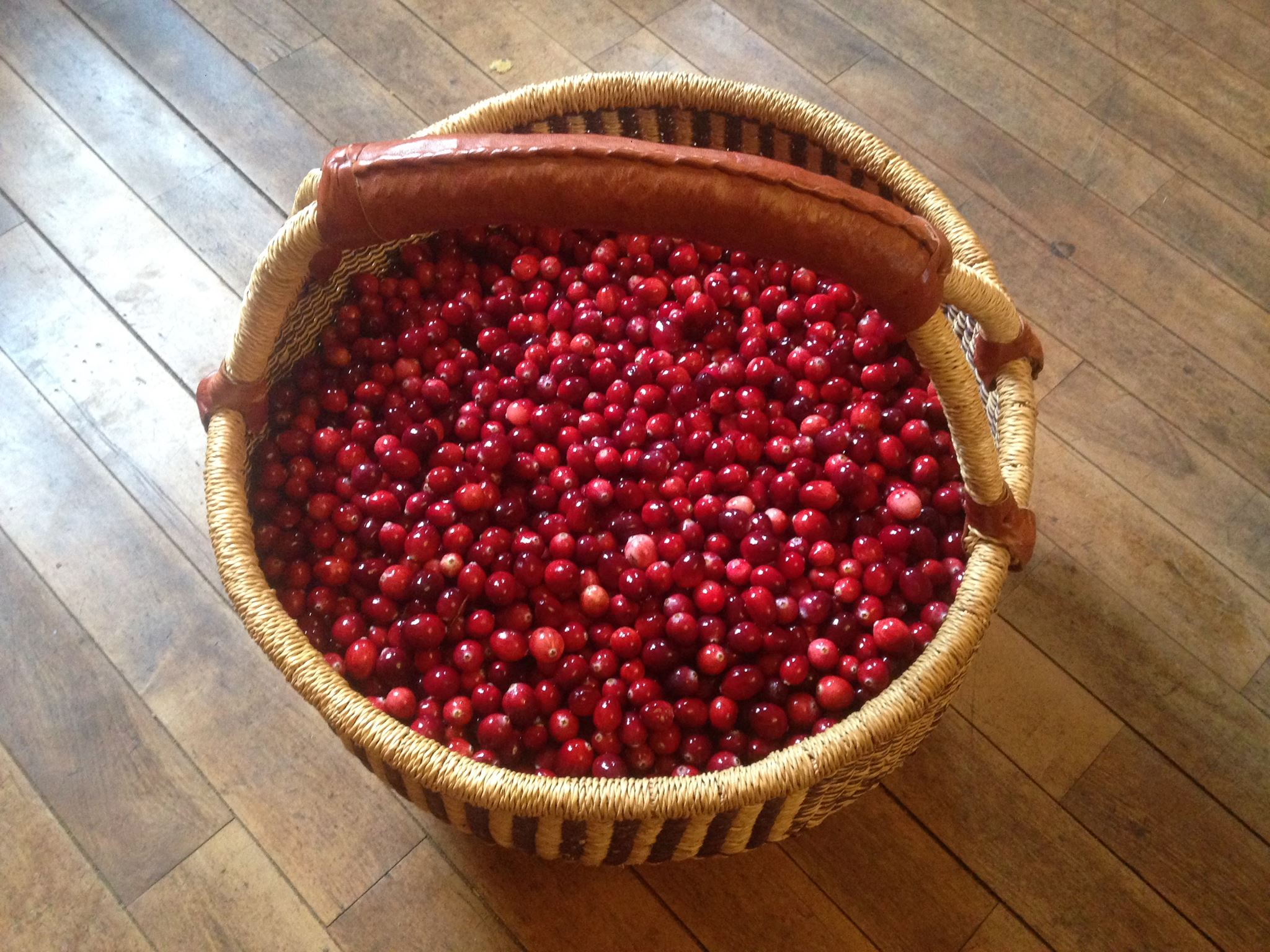 meka_farm_cranberry_basket.jpg