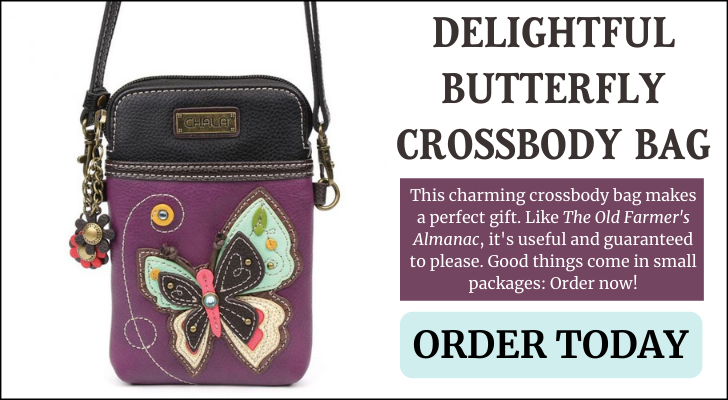 butterfly_chala_bag_ad.png