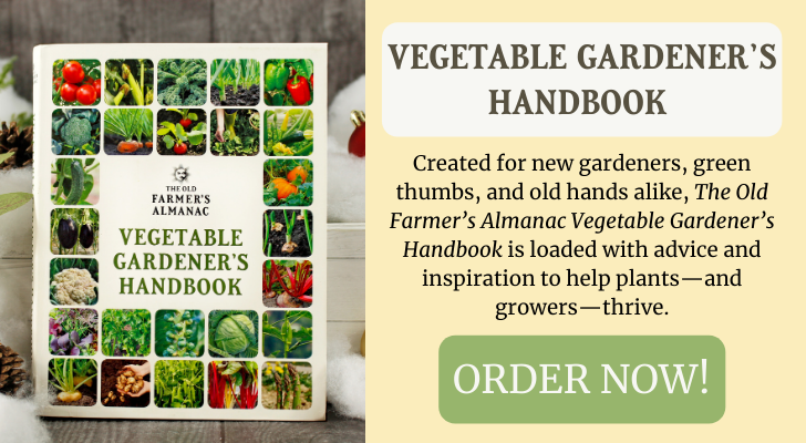 vegetable_gardeners_handbook_christmas_ad.png
