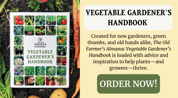 vegetable_gardeners_handbook_spring_ad.png