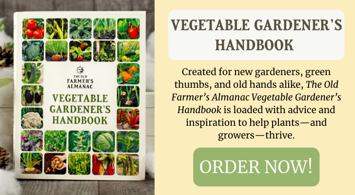 vegetable_gardeners_handbook_winter_ad.png