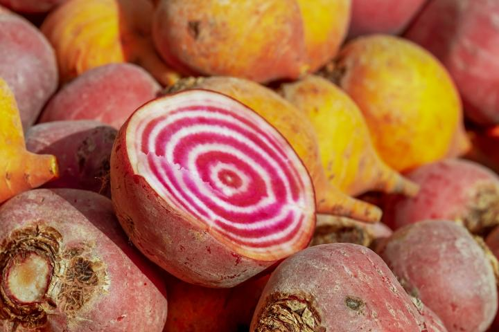 Beet with rings of red and white