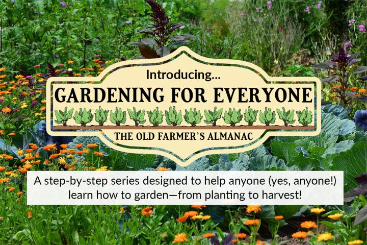 Gardening for Everyone image