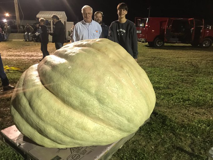 giant-pumpkin.png