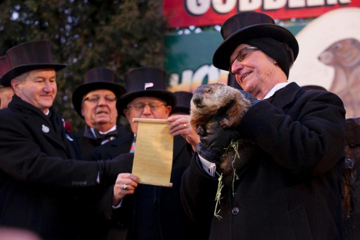 Groundhog Day 2013. Photo by Anthony Quintano.
