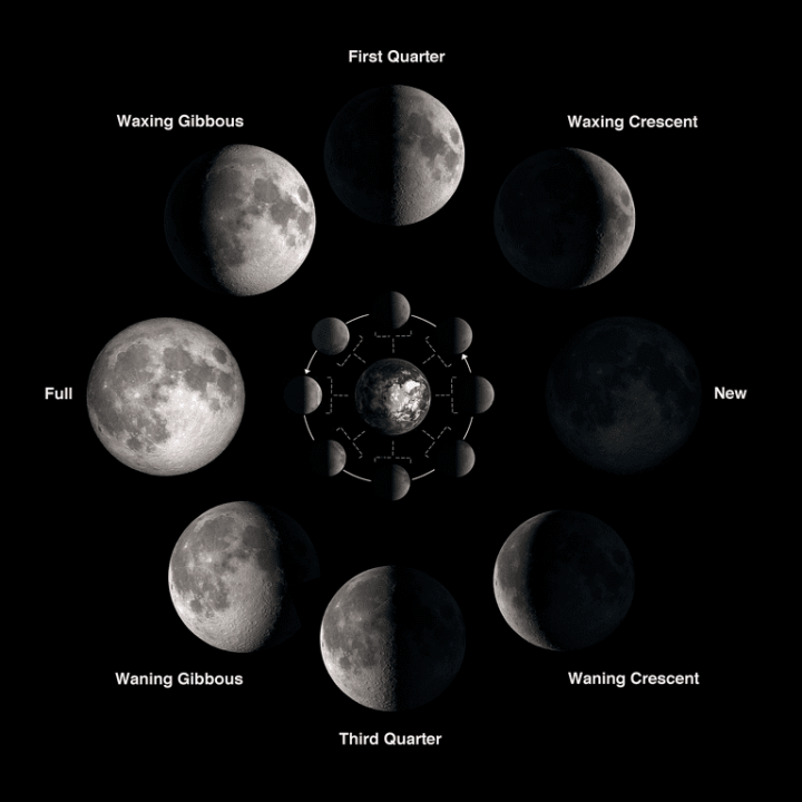moon-phases_full_width.png