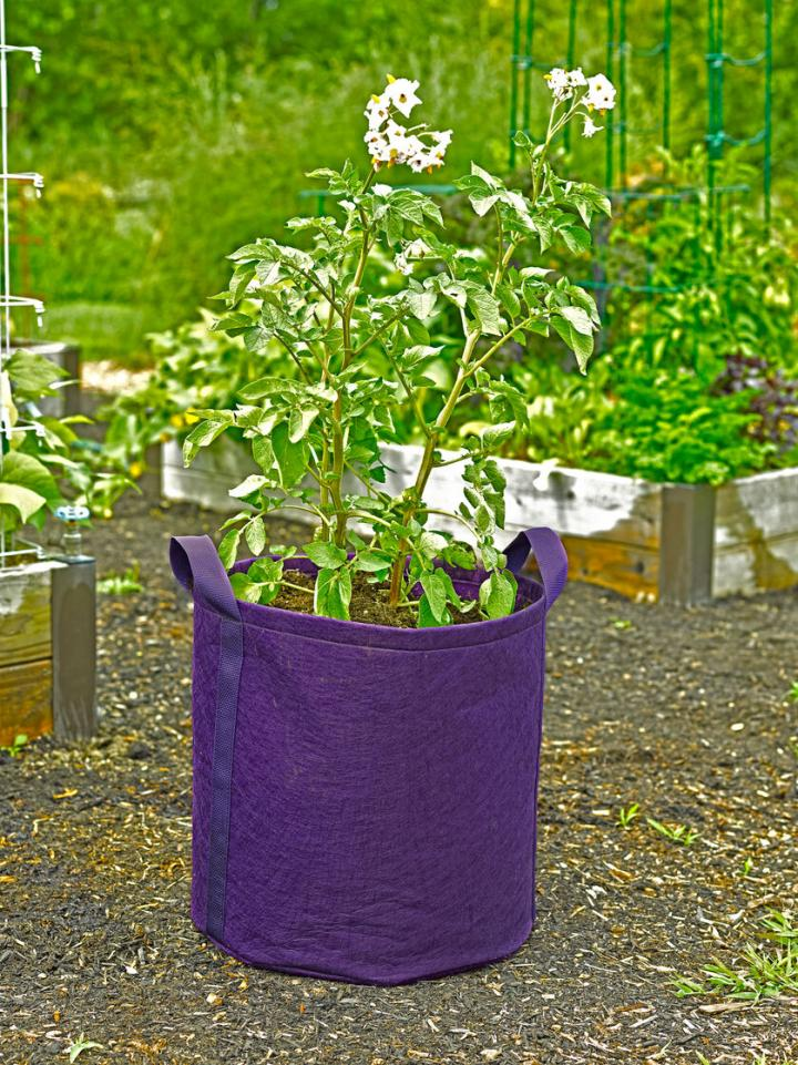 potato-grow-bags-with-handles_full_width.jpg