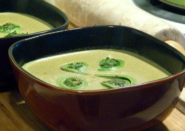recipe-creamoffiddleheadsoup_bangordailynews.com_.jpg
