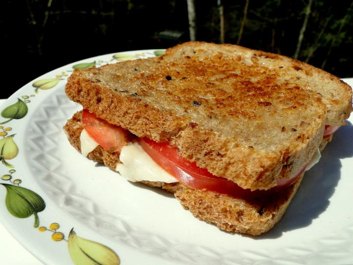 recipe-grilled-cheese-sandwich.jpg