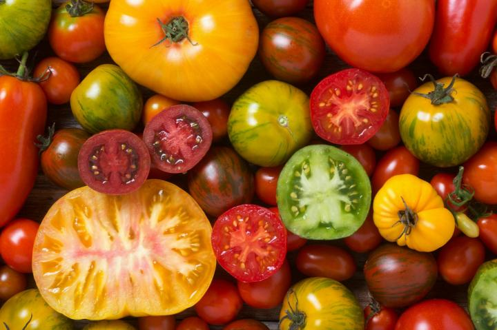Many tomato varieties. Photo by MementoImage/Getty Images