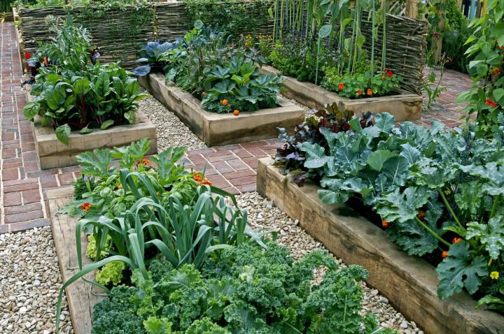 Raised Bed Garden Layout Plans | The Old Farmer's Almanac
