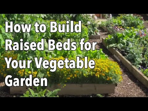 Raised Bed Gardens And Small Plot Gardening Tips | The Old