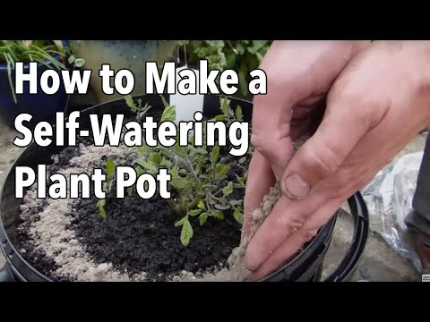 How To Make A Self Watering Plant Pot Video Old Farmer