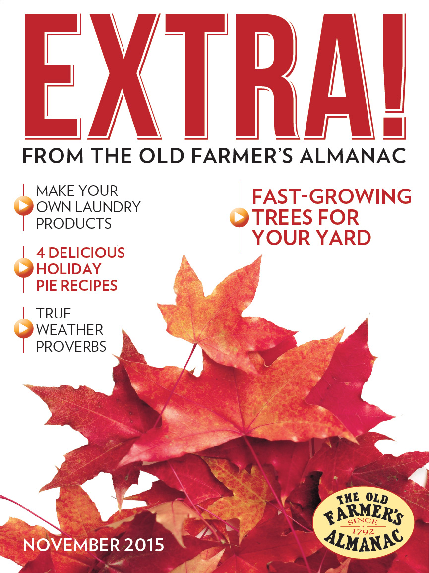 Almanac extra old farmer 39 s almanac for Farmers almanac fishing calendar