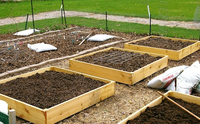 Raised Bed Gardening How to Build Cheap Fast Productive