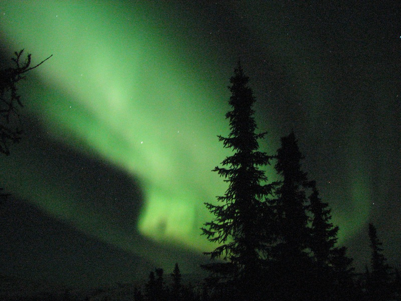 Northern Lights Travel Alaska