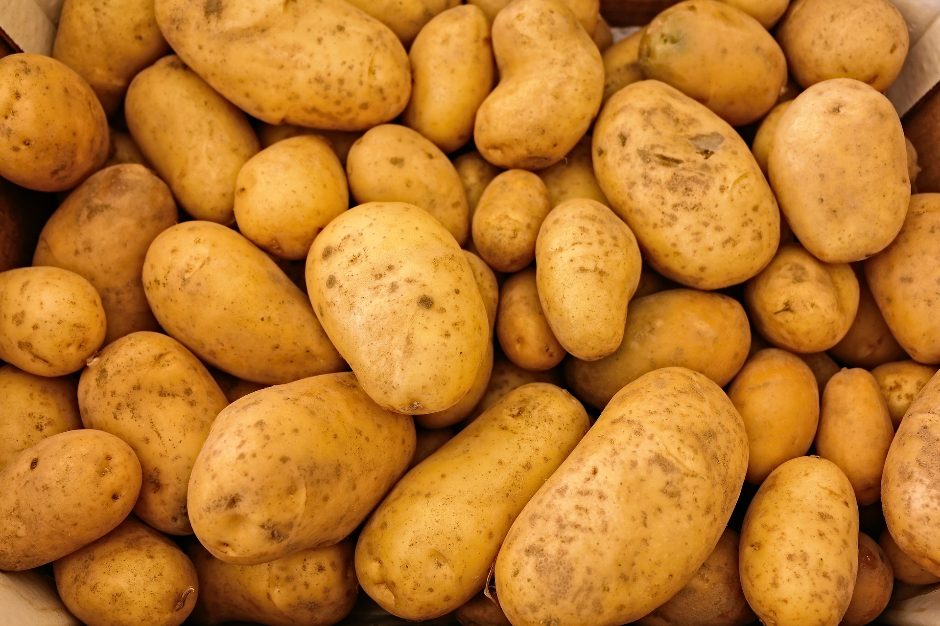 Hot Potatoes Home Page
