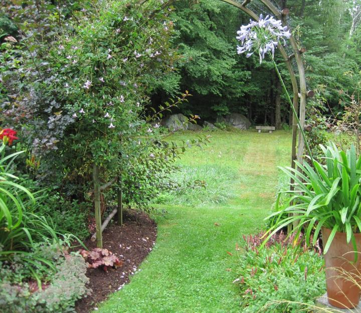 How To Start Landscaping Your Yard : Landscaping your yard where to start old farmer s almanac