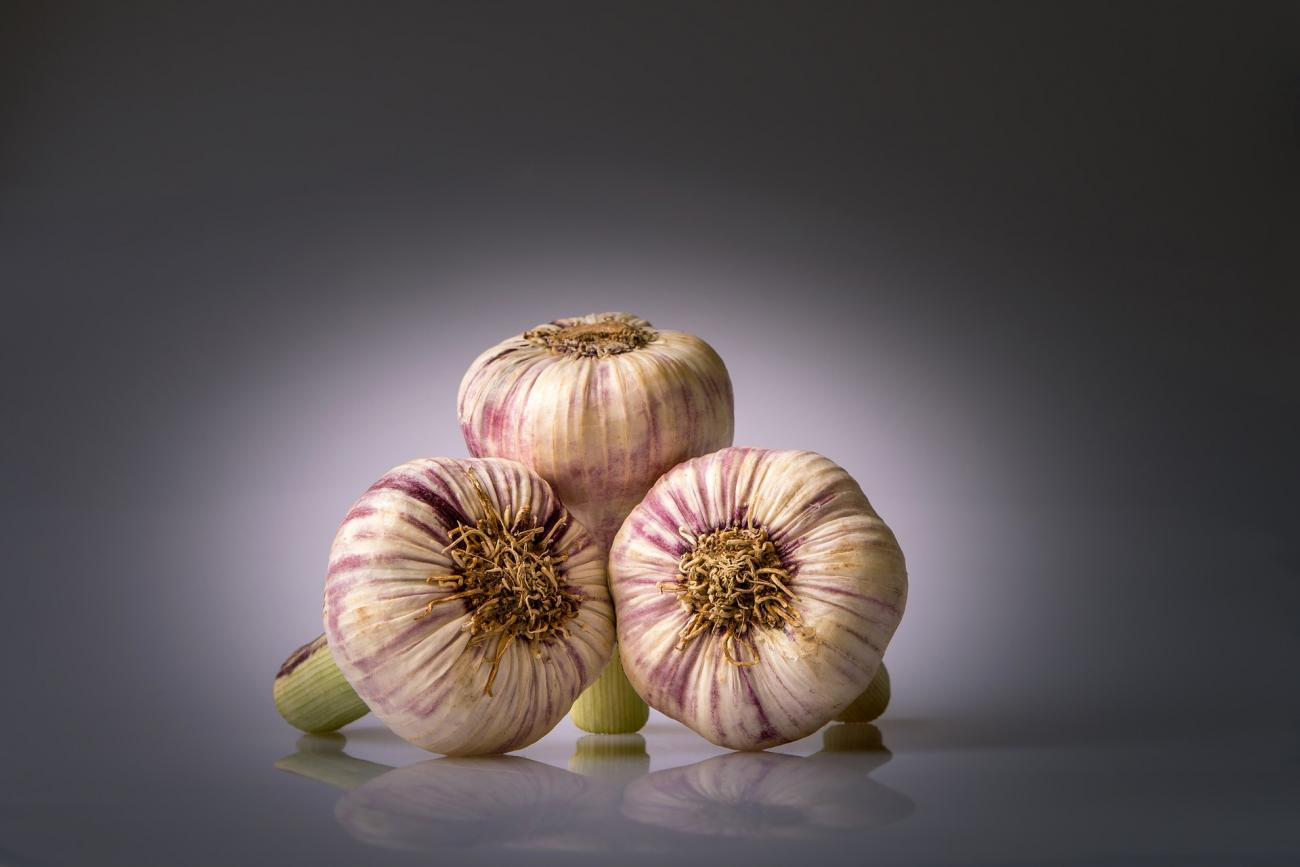 garlic-history-of-healing-benefits