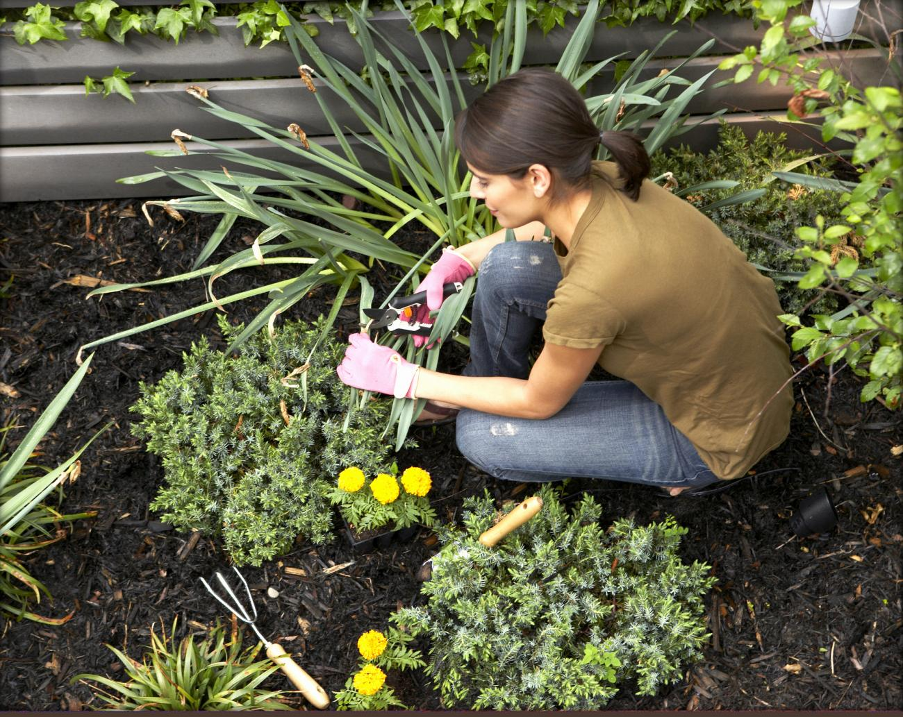 Landscaping for Low Maintenance-Thinkstock