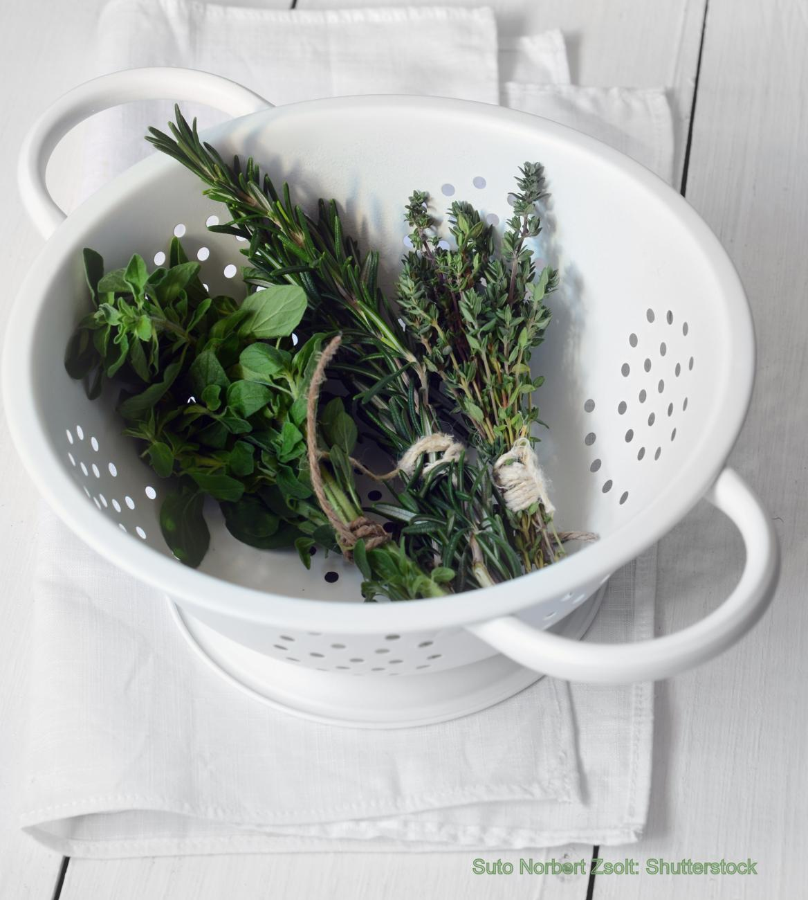 Herbs in Bowl