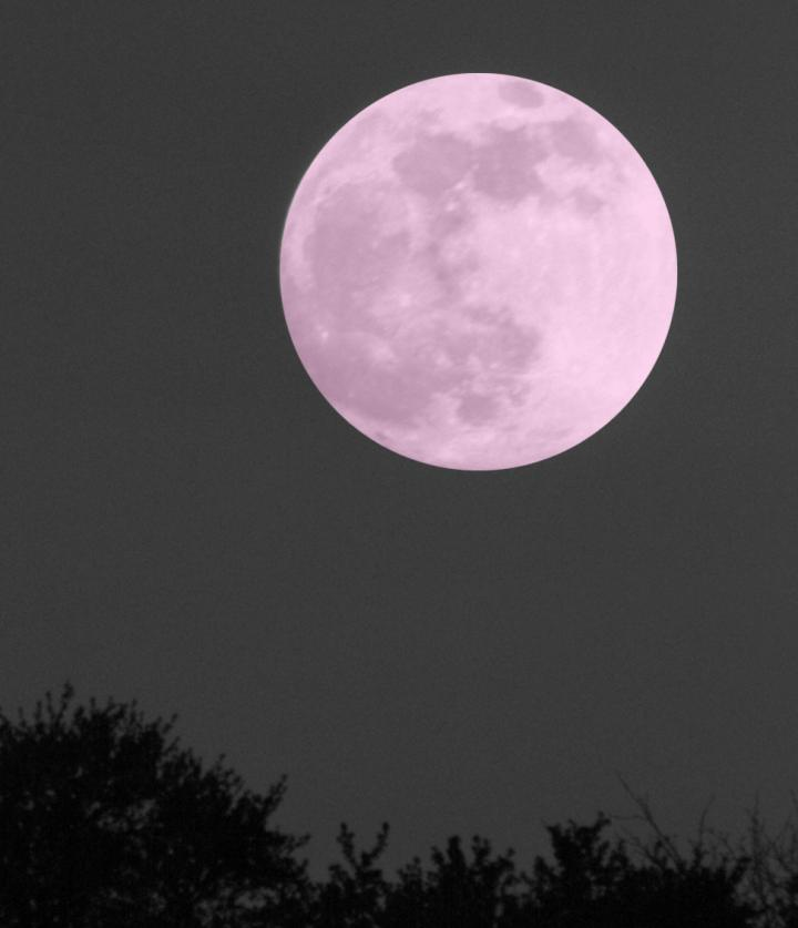 Pink Moon 2017 28 Pink Moon April 2017 Full Pink Moon In