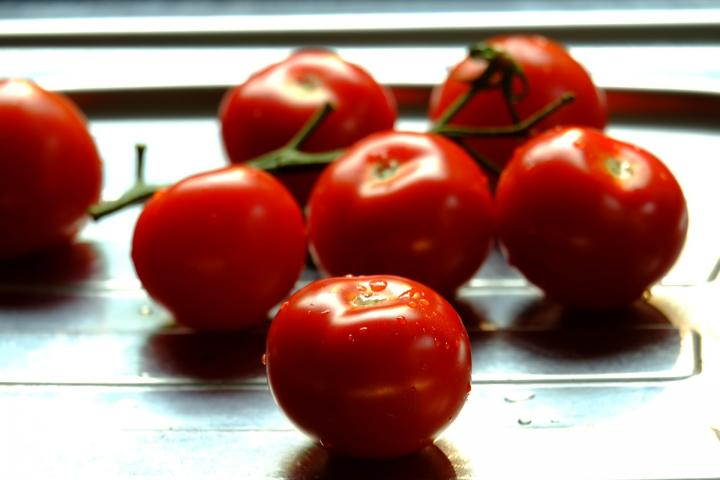 tomato-tips-how-to-grow-tomatoes.jpg